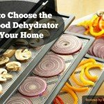 Finding The Best Food Dehydrator – Updated Reviews for 2018