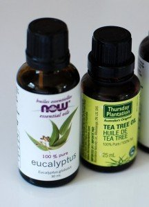 essential oils for acne - lavender and tee tree oil