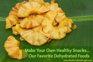 Our Favorite Dehydrated foods