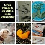 Five Fun Ways to Use a Food Dehydrator