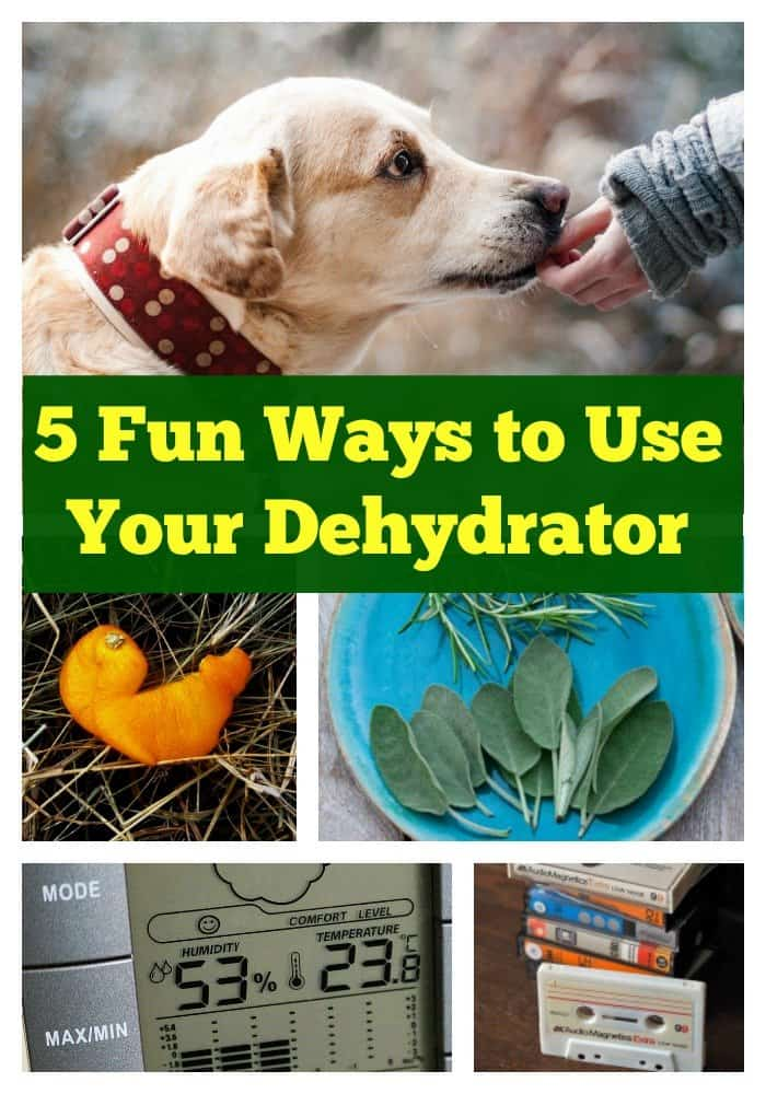 Pinterest Collage - 5 Fun Ways to Use Your Dehydrator