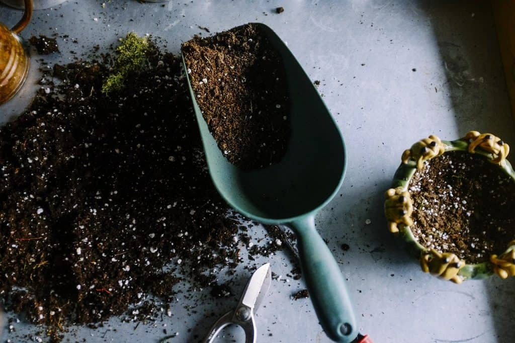 potting soil and scoop on bench
