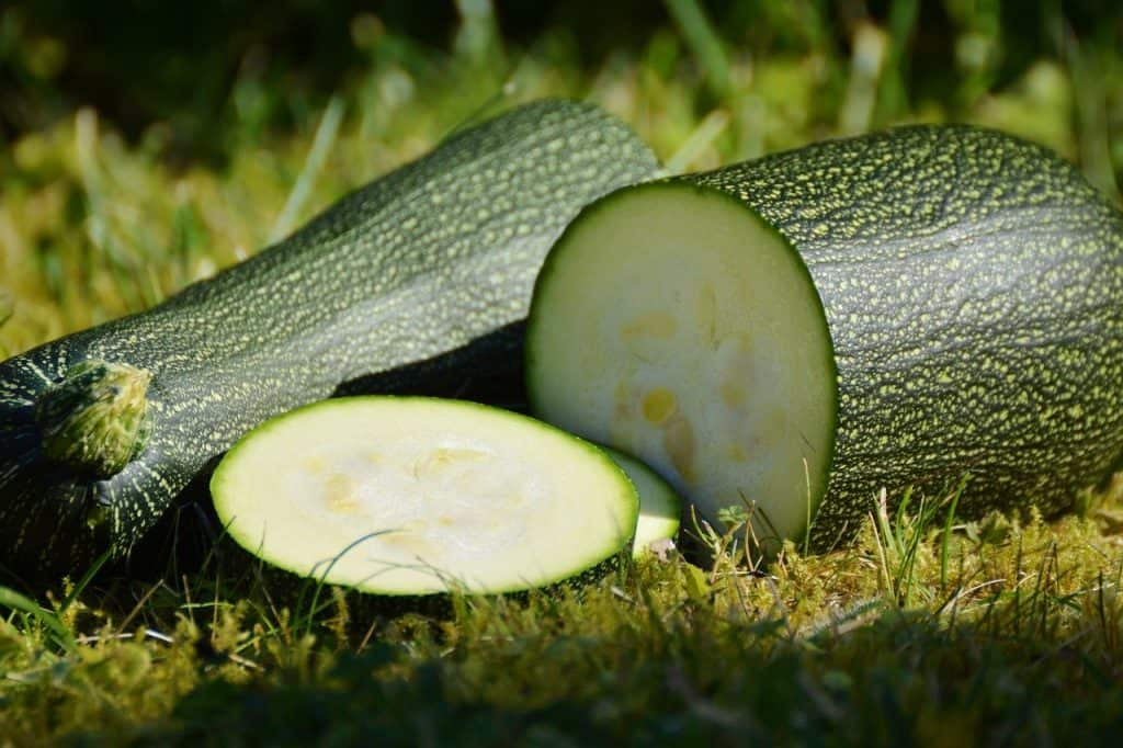 fresh sliced zucchini