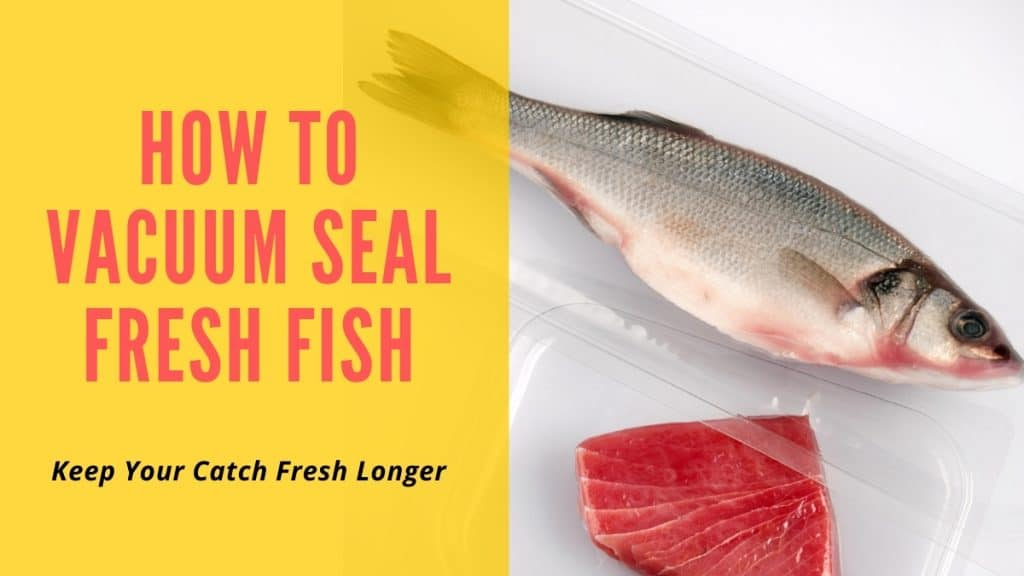 How to Vaccum Seal Fish - Keep Your Catch Fresh Longer - Background Image of Salmon and whole sealed fish