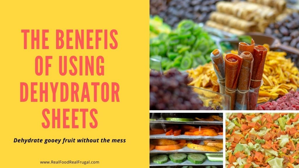 collage of dehydrated fruit and vegetables with title The Benefits of Dehydrator Sheets