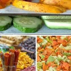 How to Use Dehydrator Sheets: The Benefits, Care and Alternatives