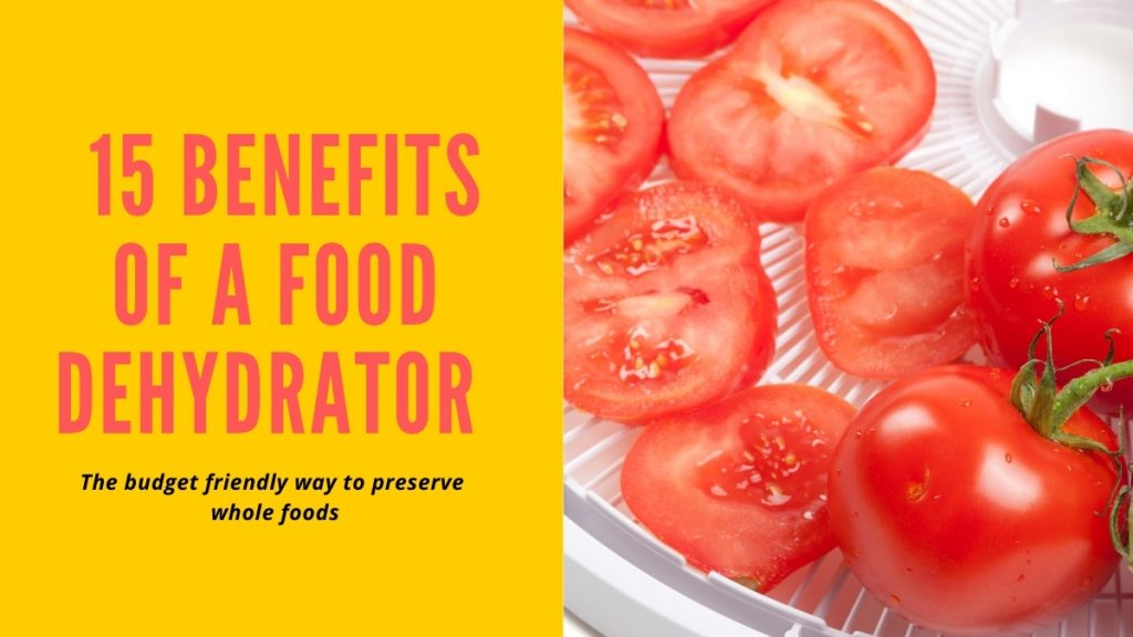 15 benefits of a food dehydrator - the budget friendly way to preserve whole foods
