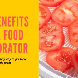 15 Reasons Why Everyone Should Own a Food Dehydrator