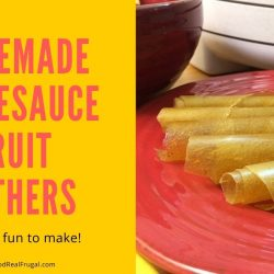 Make Your Own Applesauce Fruit Leather In The Dehydrator